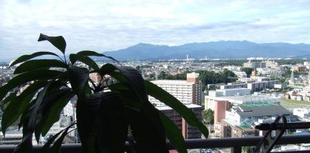 町田 016.jpg