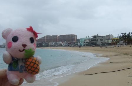 沖縄 022.jpg