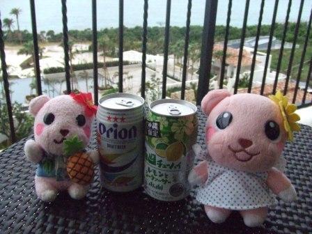 沖縄 027.jpg