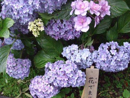 鎌倉 029.jpg